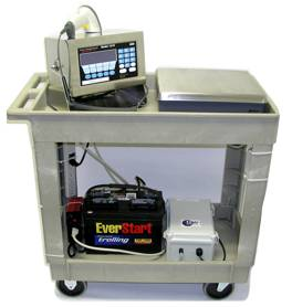 Mobile scale station cart equipped with a Weigh-Tronix 1310, bench scale, and battery with a DC/AC inverter
