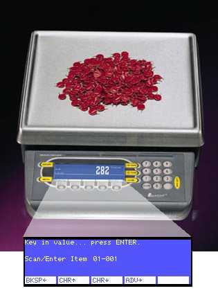 ITRAX Weigh-Tronix PC-820 Counting Application prompting for the Item number to be counted